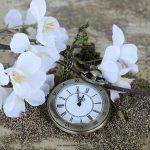 Daylight saving timeって知ってる?日本では「サマータイム」とも呼ばれる、省エネ対策制度
