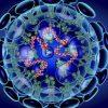 シアトルでの新型コロナウイルス感染確認について